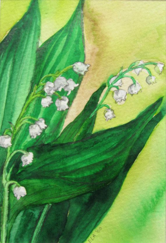 Lily of the Valley Original Watercolor Painting by ElaDecors