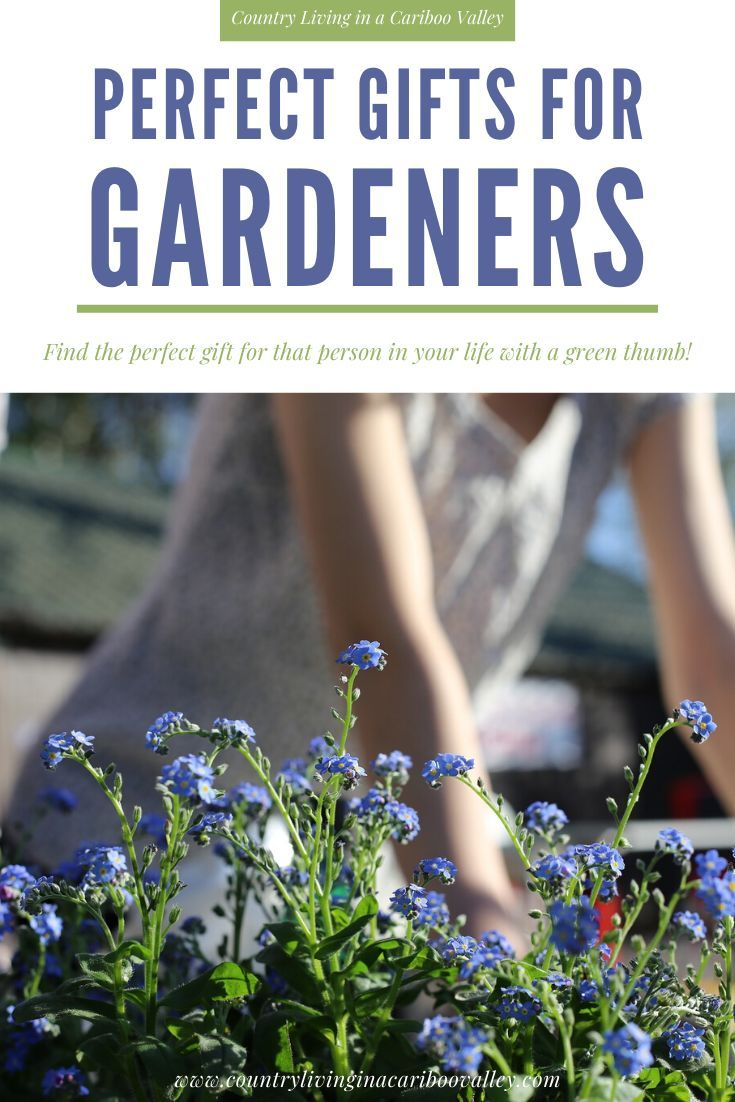 Perfect Gift Ideas for Gardeners is part of Garden gifts, Educational garden, Garden, Christmas gifts for wife, Diy garden projects, Gifts - If you love a gardener, we have the perfect gift ideas for gardeners  For birthdays, holidays, Christmas  it's the best gardening gifts