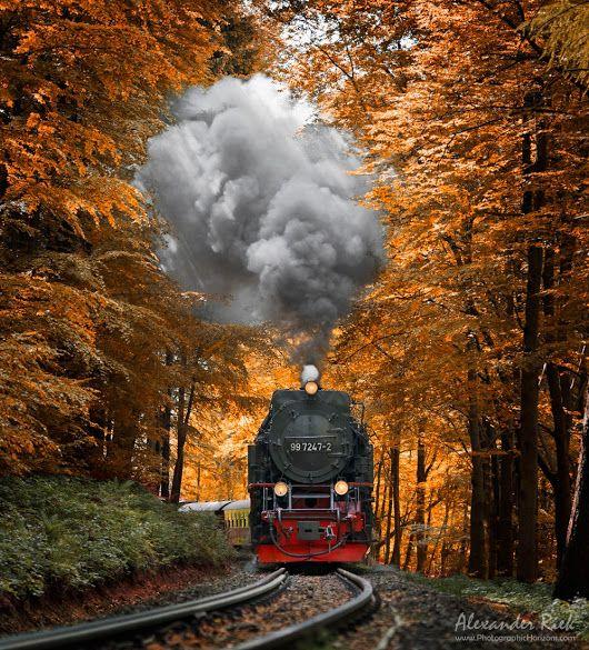 """""""Forest Machine"""" By Alexander Riek Www"""