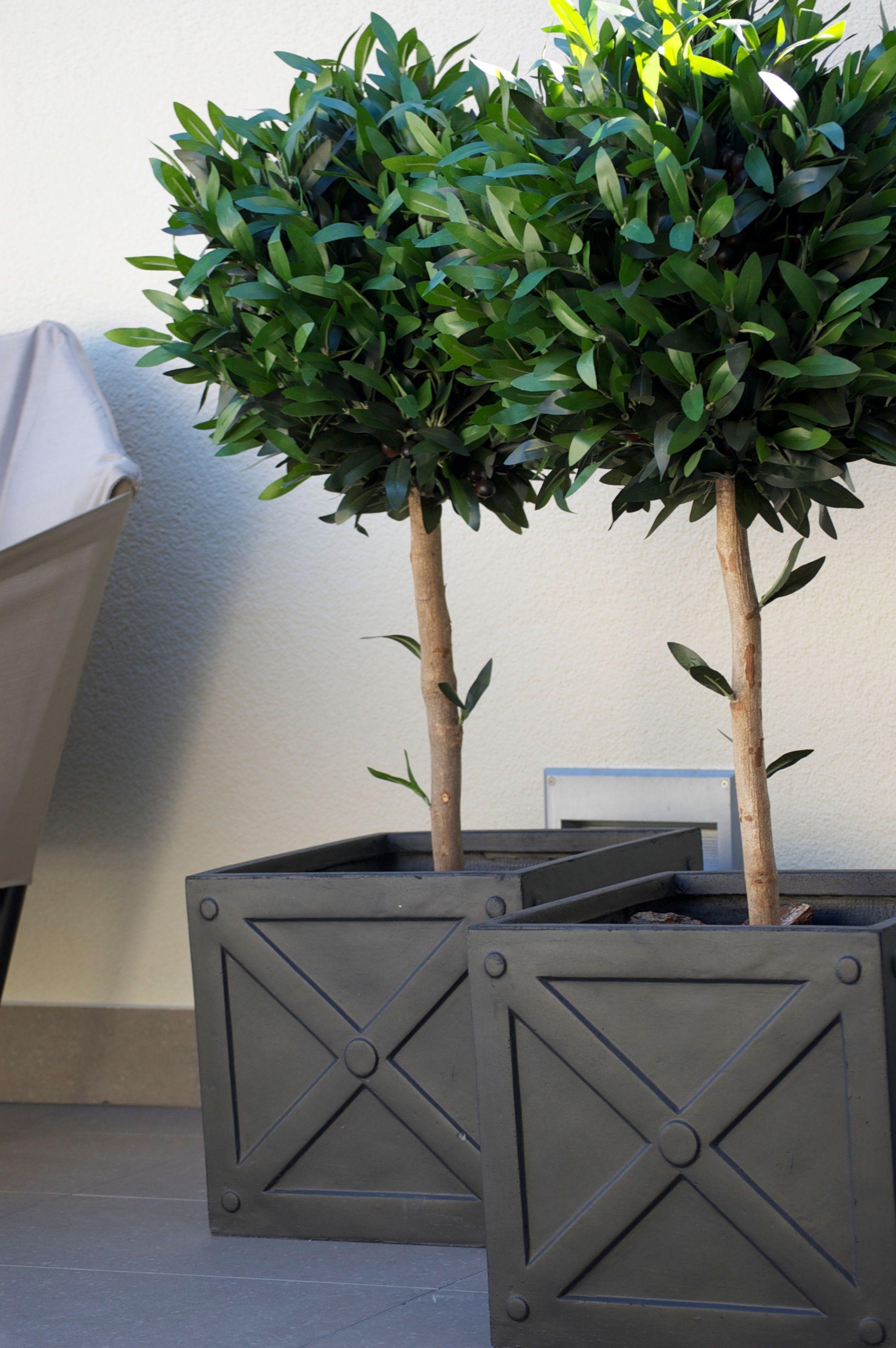Olivos artificiales con macetas de fibra de arcilla for Decoracion jardin macetas