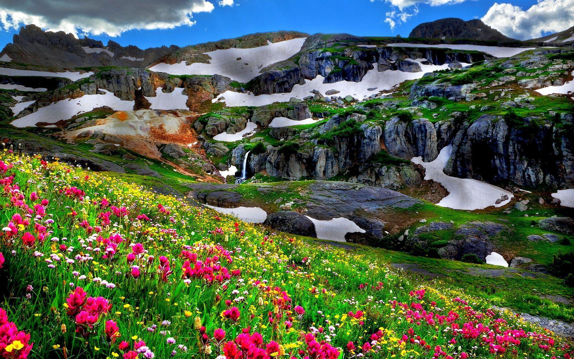terre nature paysage terre nature montagne printemps fleur champ pierre snow fond d 39 cran. Black Bedroom Furniture Sets. Home Design Ideas