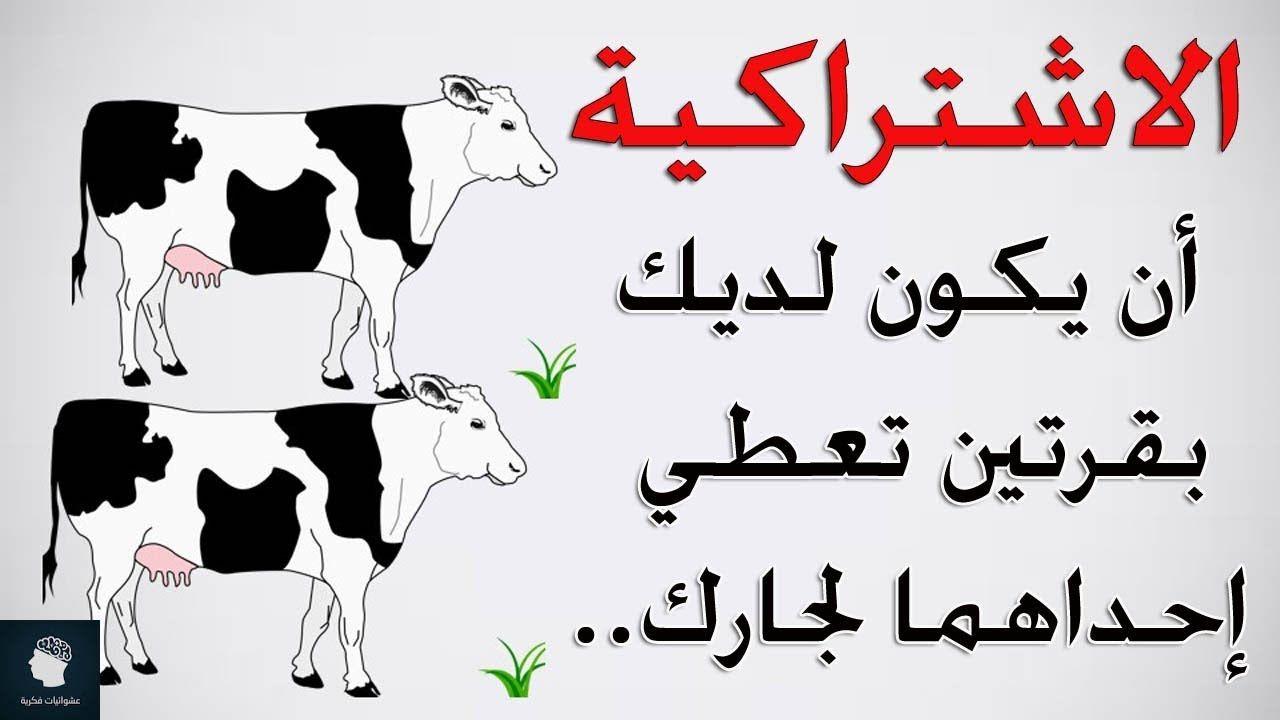 مصطلحات اقتصادية تسمعها يوميا ولا تعرف معناها يشرحها لك البقر بشكل مب Character Fictional Characters Calligraphy
