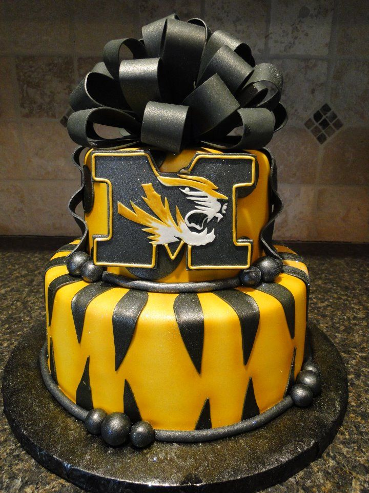 The cake at my Mizzou graduation party!