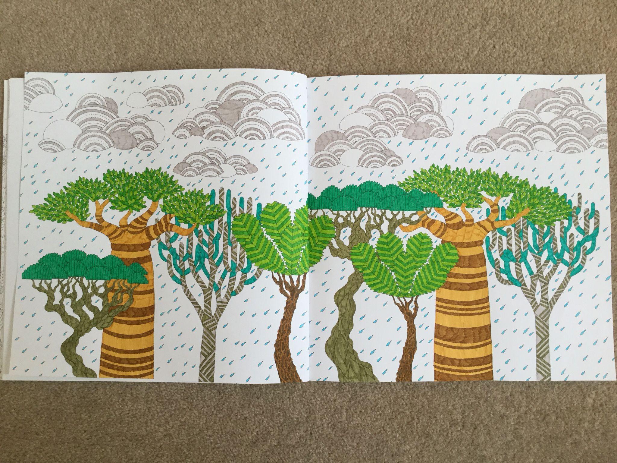 Raining on trees - Wild Savannah Book, Millie Marotta   Millie ...