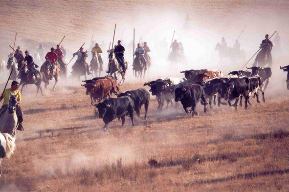 Ven a las fiestas de Cuéllar ¡son los encierros más antiguos de España! - https://vivirenelmundo.com/ven-las-fiestas-de-cuellar-son-los-encierros-mas-antiguos-de-espana/3778