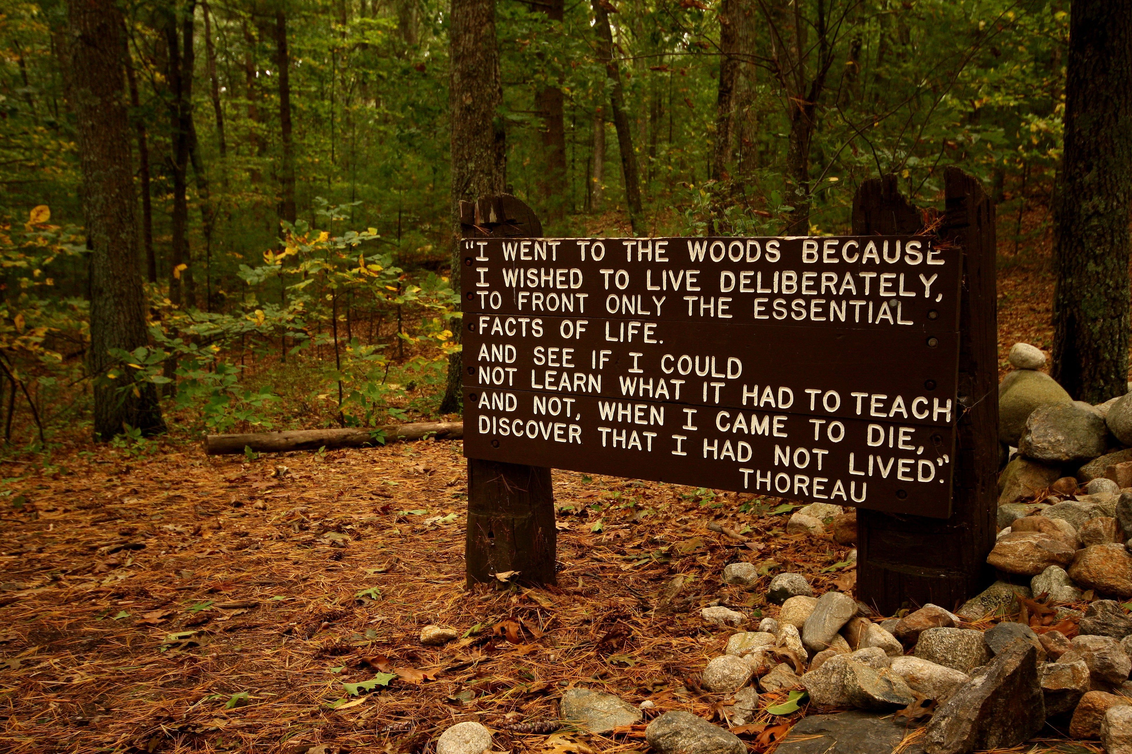 A Suburban Thoreau - Bringing the Spirit of Walden Home