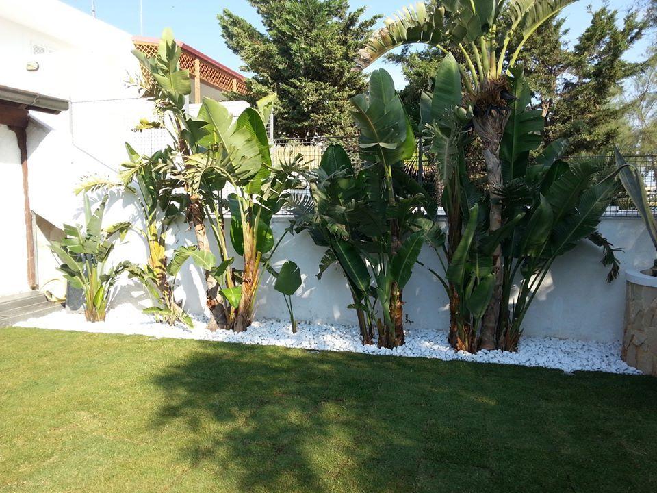 Aiuole con ciottoli bianchi aiuola con ciottoli with - Ciottoli bianchi giardino ...