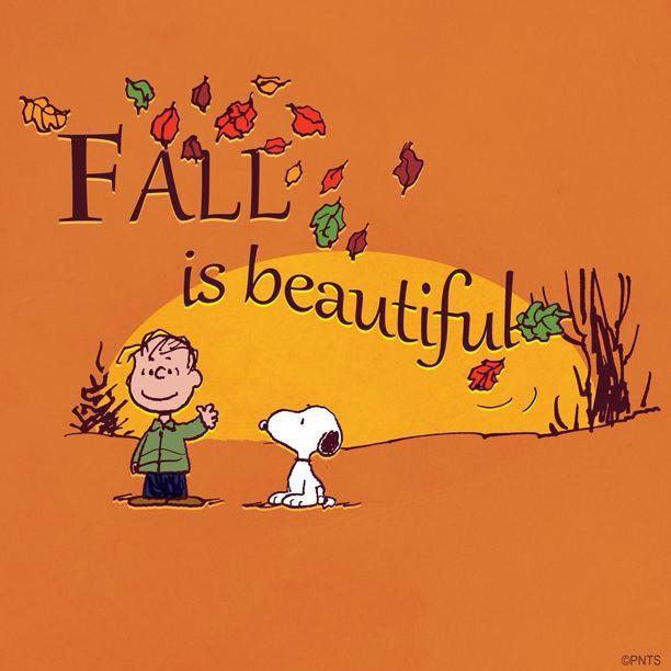 Peanuts autumn pinterest herbst spr che und for Herbst zitate