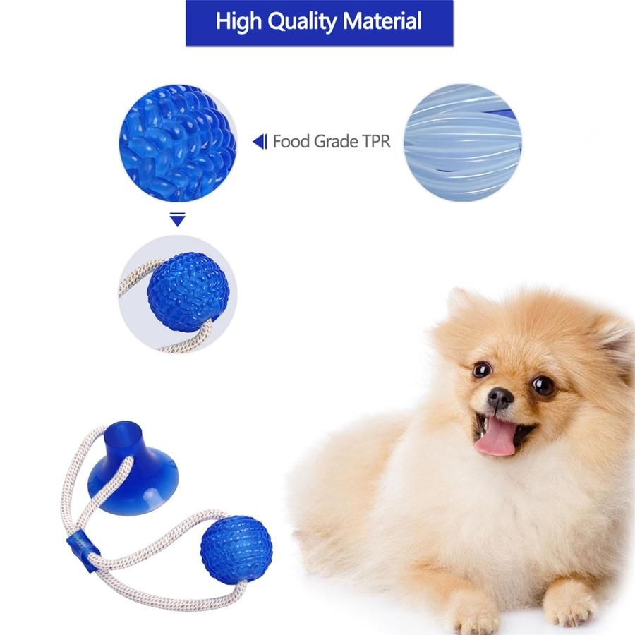 Last Day Promotion Flexible Dog Molar Bite Toy (With