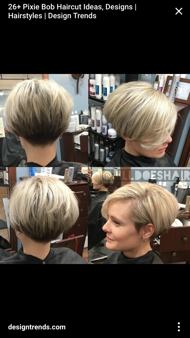 pin by aimee synesael on friday nights in 2019 | pixie bob