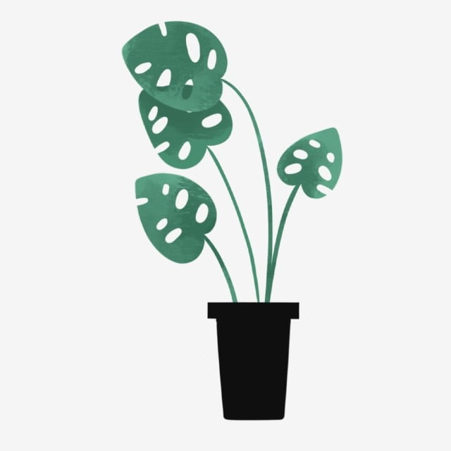 Hand Drawn Cute Plants Cute Hand Drawn Summer Png Transparent Clipart Image And Psd File For Free Download How To Draw Hands Plants Draw
