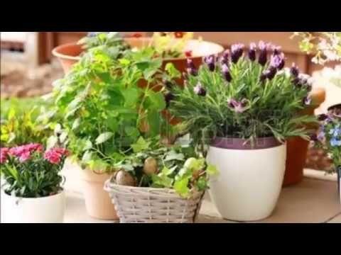 Jarrones, ánforasy otros recipientes en la decoración de jardines - decoracion de jardines