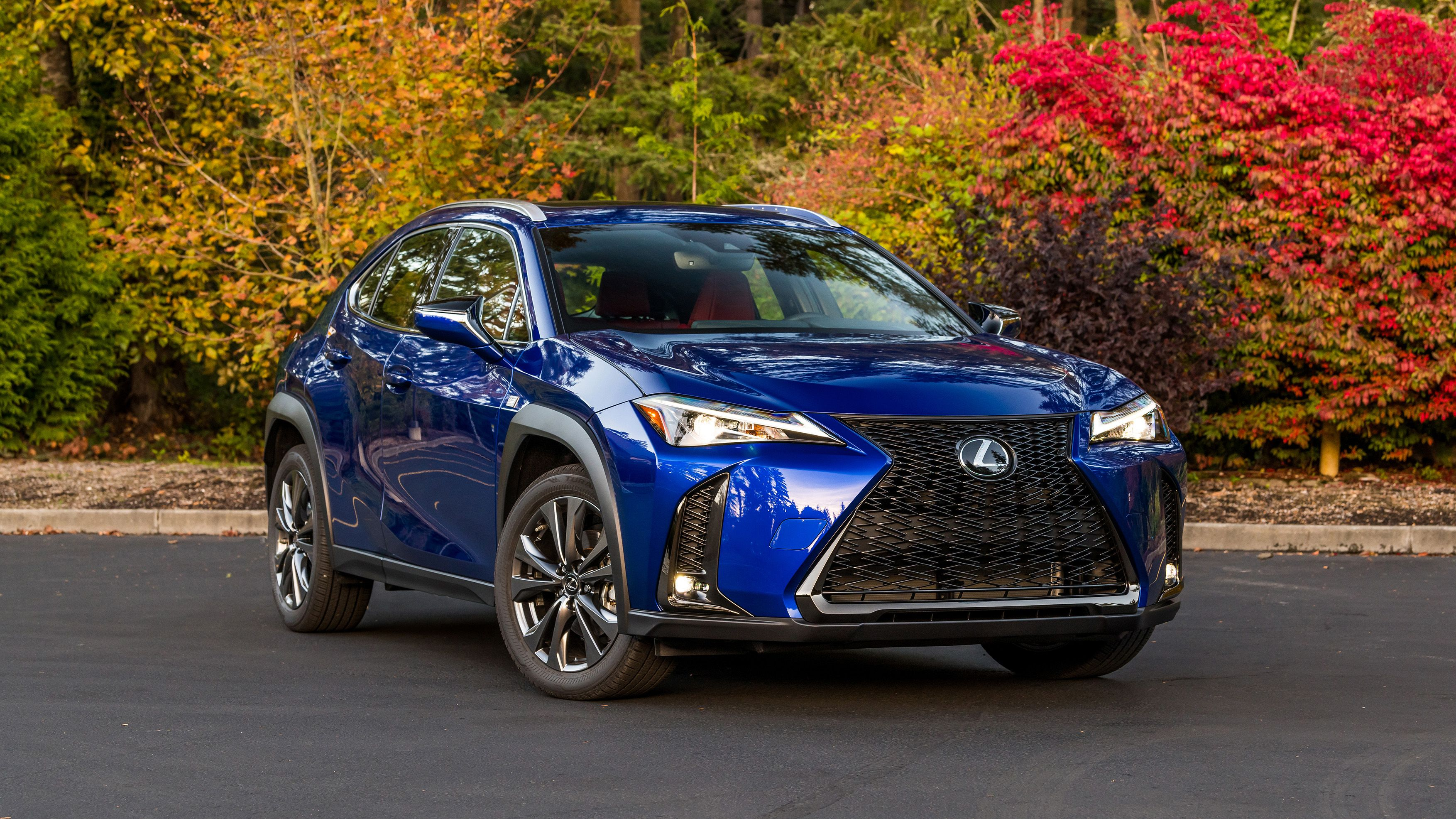 2020 Lexus UX 200 FSport Drivers' Notes Interior