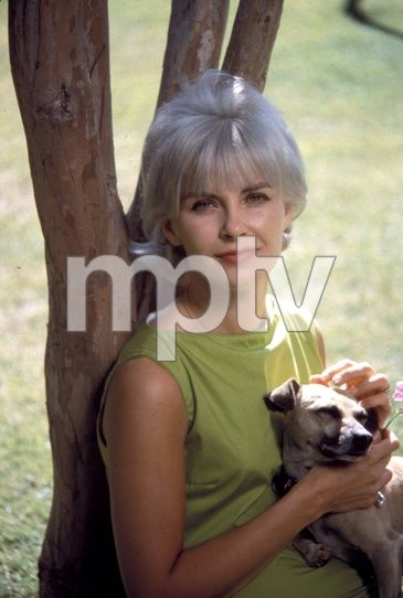 mptvimages : Search Results Display : 0070_0129