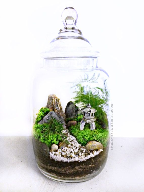 Custom Japanese Garden Terrarium With Miniature Path
