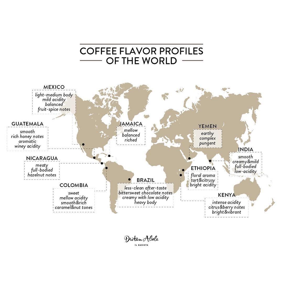 "Dritan Alsela on Instagram ""Coffee flavor profiles of the"