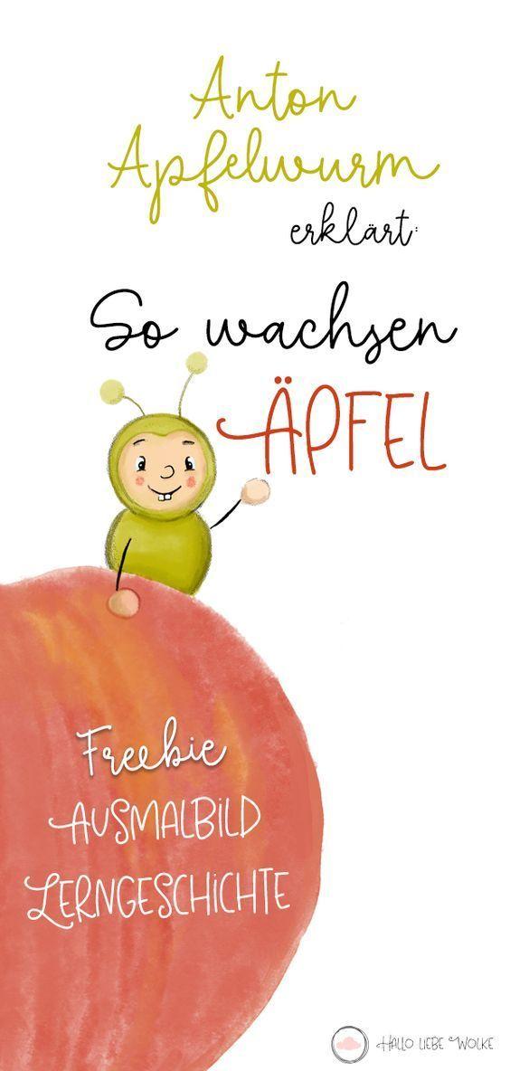 Anton Apfelwurm erklärt: So wachsen Äpfel. (Lerngeschichte & Freebie) • Hallo liebe Wolke