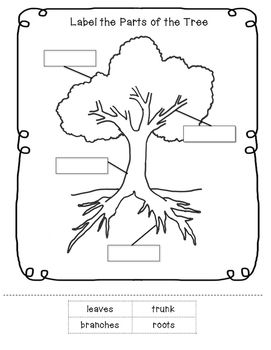 parts of a tree worksheet little learning lane tpt store tree study plant lessons. Black Bedroom Furniture Sets. Home Design Ideas