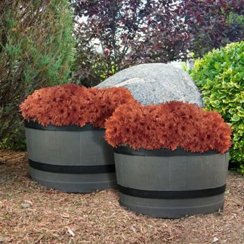 Costco Barrel Planter 2 Pack Outdoor Futnitutr Planters Barrel