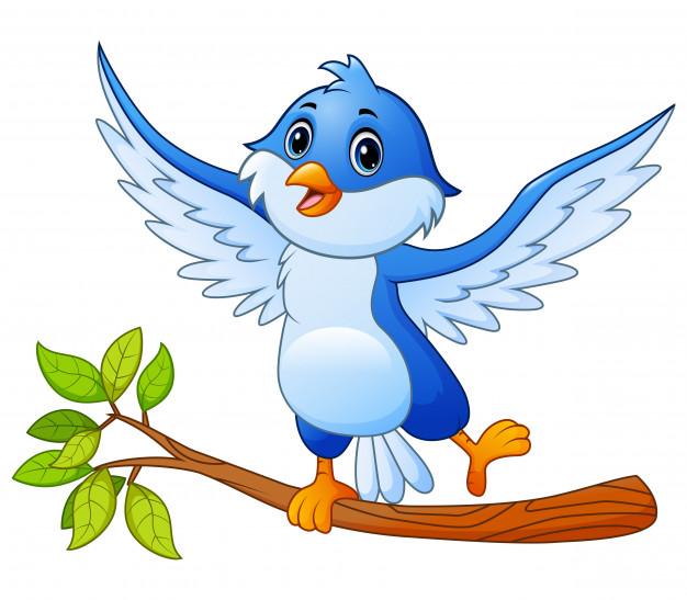 افضل قصص اطفال قبل النوم افلام كرتون قصص اطفال قبل النوم تحميل قصص اطفال قبل النوم حكايات قصص اطفال قبل النوم قصة اط Bird Stand Blue Bird Tree Branches