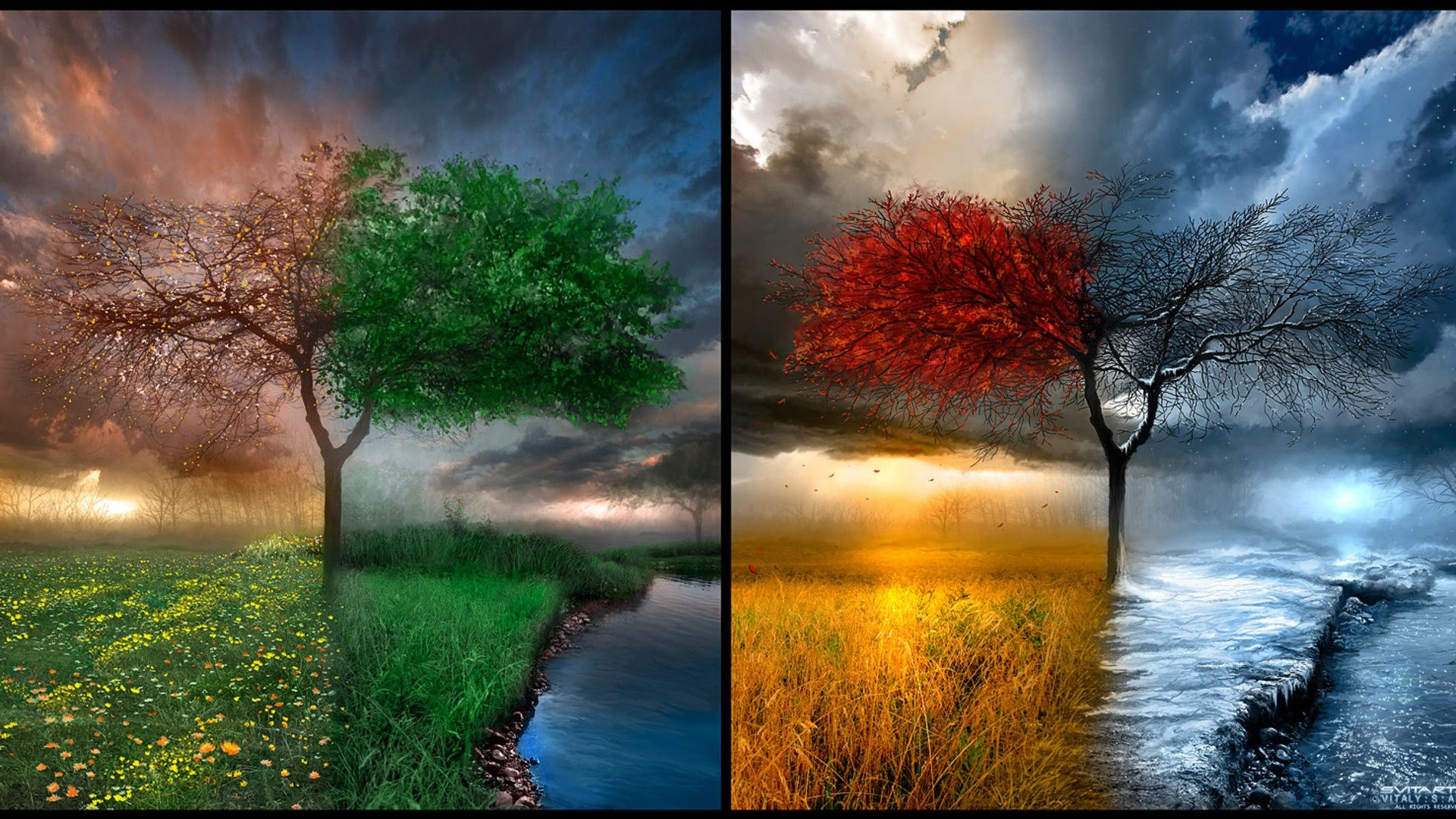 Four Seasons Nature Windows 8 Wallpaper Windows8