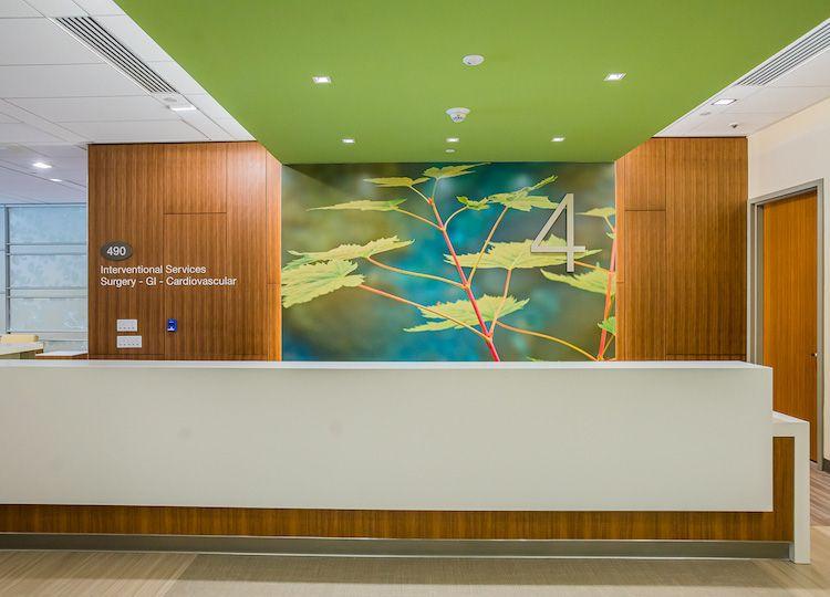 California Pacific Medical Center Healthcare Design Healthcare Artwork Hospital Design