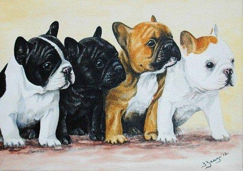 Bouledogue Francese French Bulldog Puppies Painting Acrilico Su