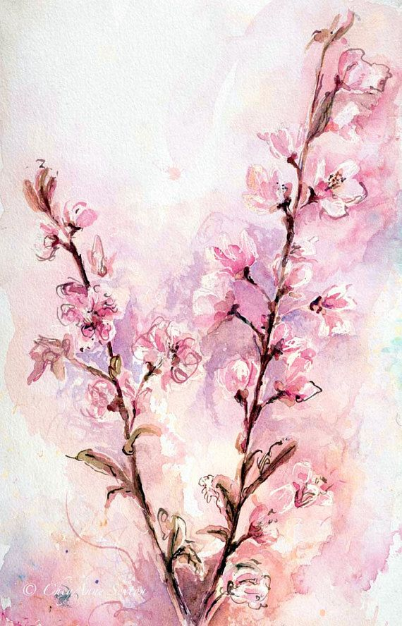 Cherry Blossoms Lovely Pink Purple White Flowers Watercolour Fine