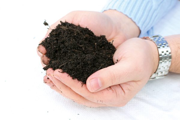 Organic Soil Improver Peat Substitute Premium Topsoil Supplies In 2020 Organic Soil Soil Top Soil