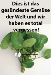Dies ist das gesündeste Gemüse der Welt und wir haben es total vergessen Dies ist das gesündeste Gemüse der Welt und wir haben es total vergessen