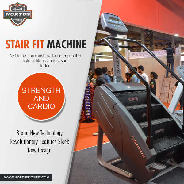 10e579b9b8b4e India s Best Gym Equipment Exporter Now in New Delhi - Nortus Fitness a popular  gym equipment