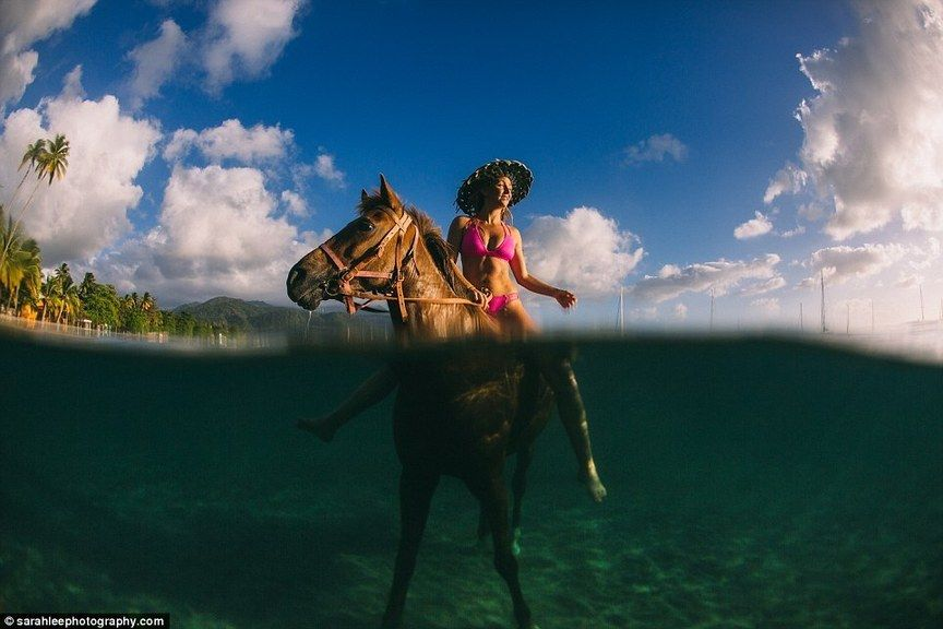 www.pegasebuzz.com   Equestrian photography : Sarah Lee
