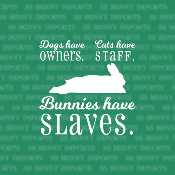 Dogs Have Owners Cats Have Staff Bunnies Have Slaves