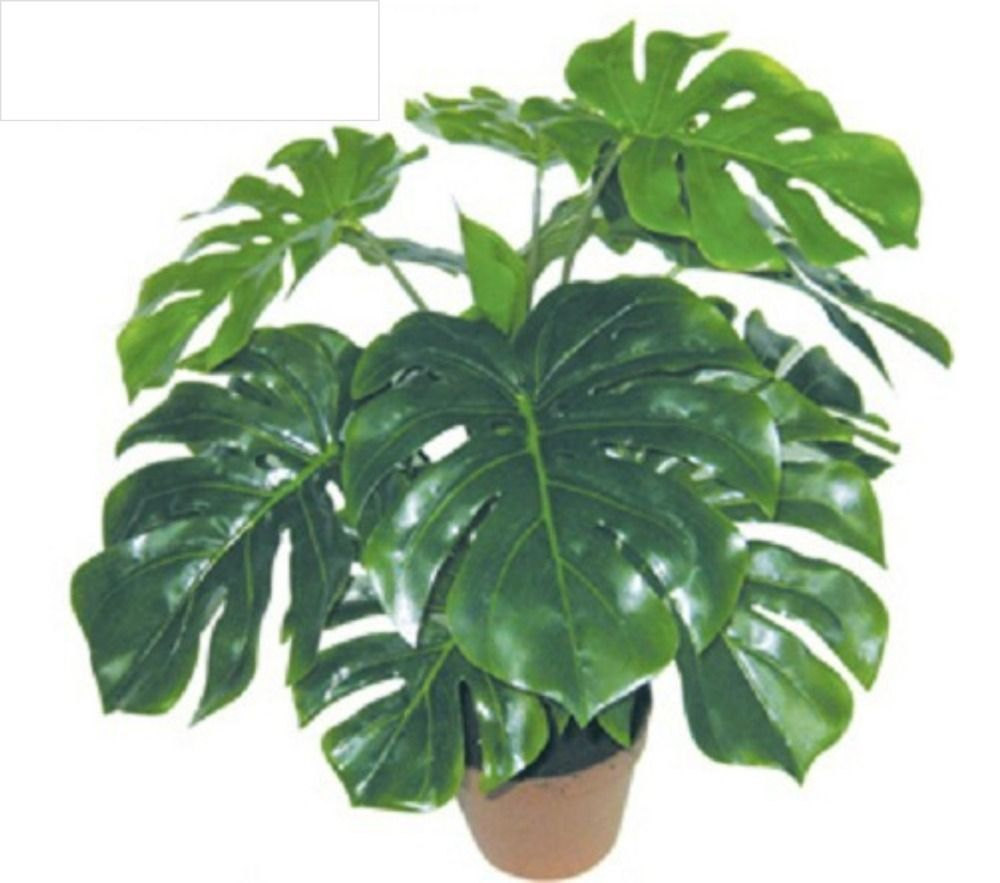 Artificial Plants Indoor Decoration Decoration Natural