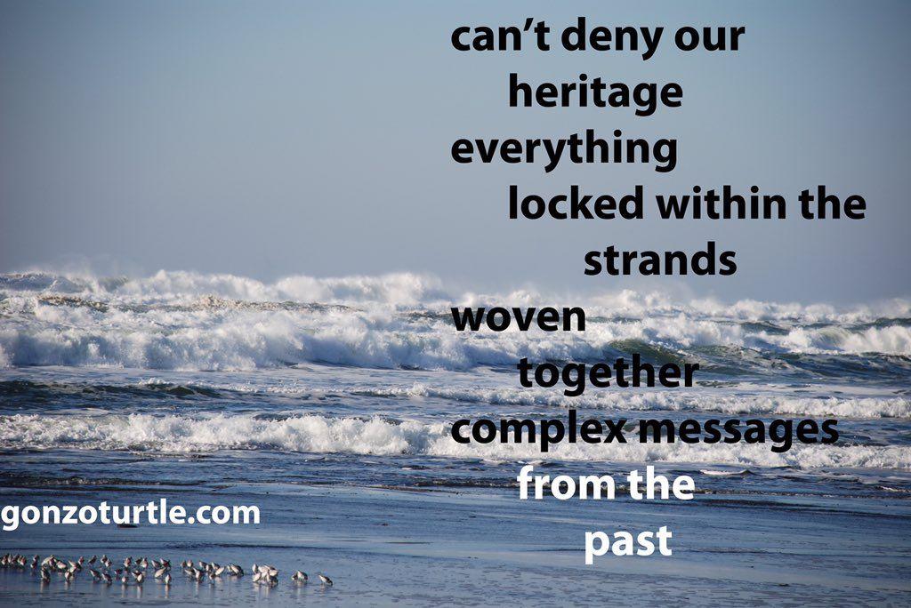 """Ron Vaught on Twitter: """"#gonzoturtle #poem #poetry #ReadThinkEvolve #life https://t.co/BLbji3EJOY"""""""