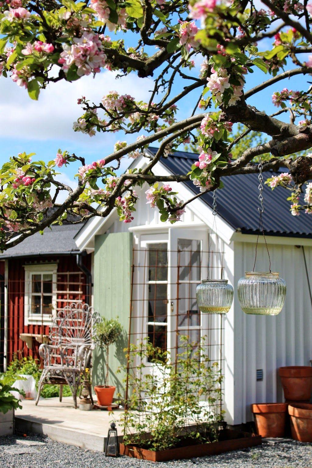 Ein Cottage Garten Blühte In Schweden | Marktführer Im Möbel !