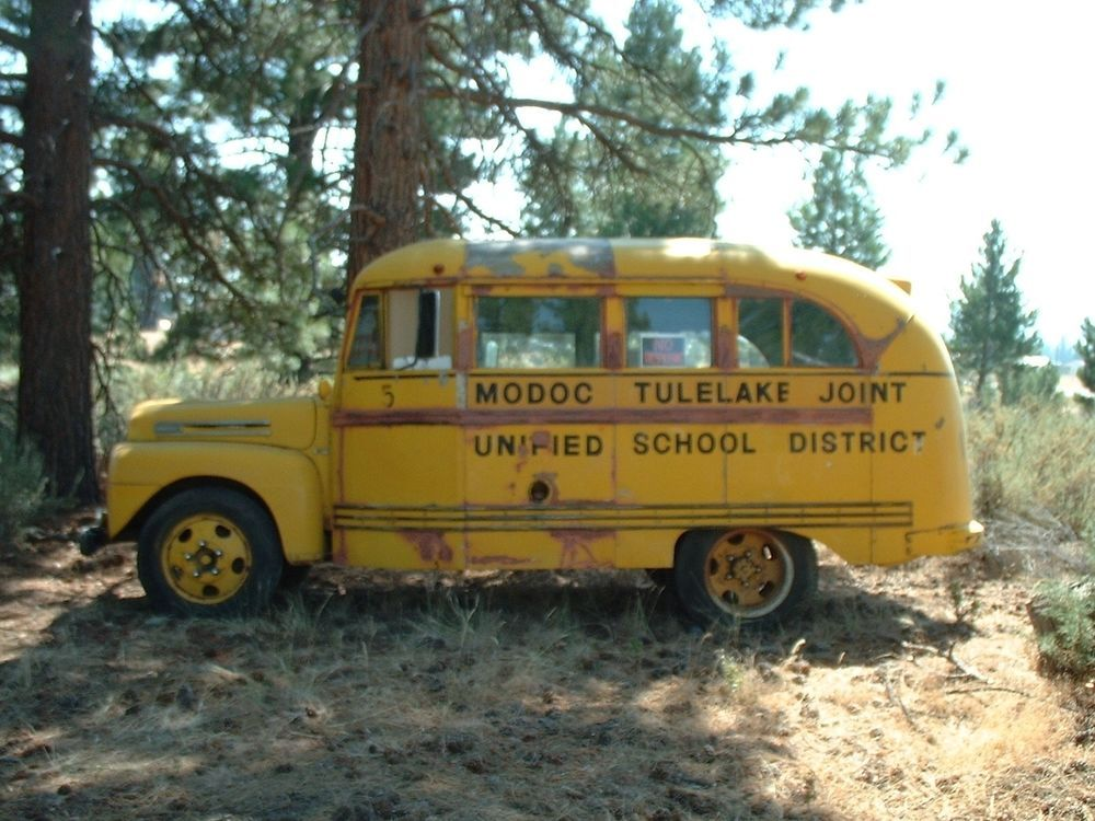 1948 Ford F 5 Wayne Body Short Shorty School Bus Large