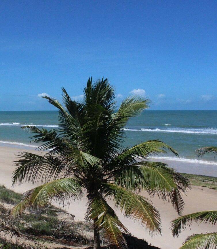 Lindo mar de Alagoas!