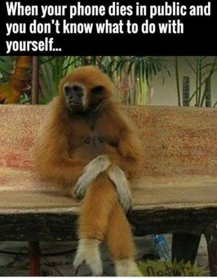 Fitness humor hilarious so true words 36 Ideas #fitness #humor