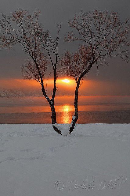 sharing sunrise gill judy