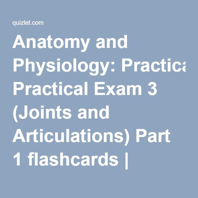 Anatomy and Physiology: Practical Exam 3 (Joints and Articulations ...