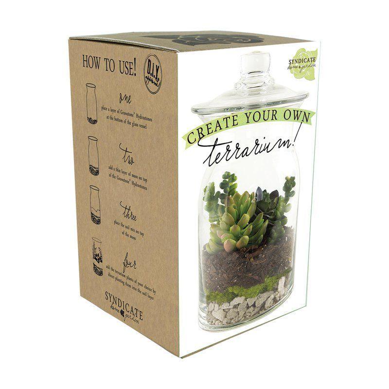 Syndicate Home Garden Diy Terrarium Kit 100 06 00 Gardeningdiy Diy Terrarium Kit Terrarium Diy Fairy Terrarium