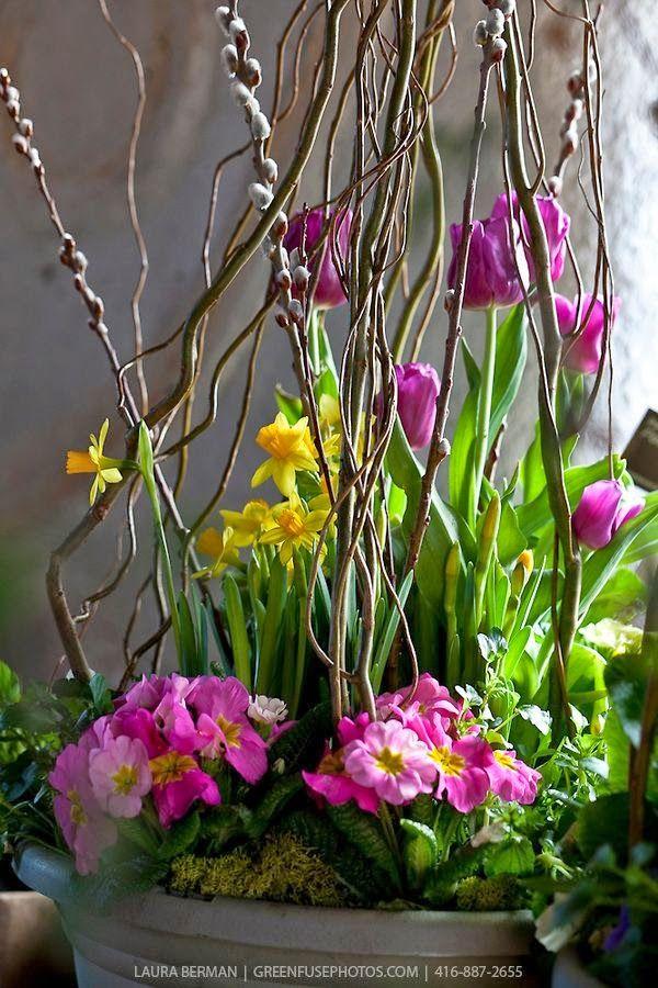 planting spring planter ideas - Spring Planting Ideas