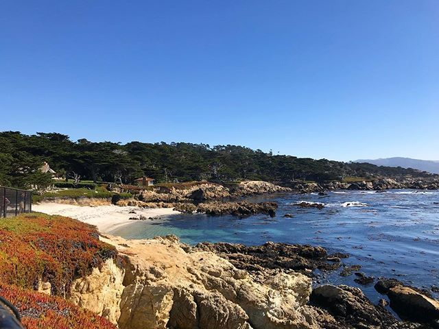 Ocean 17miledrive Pebblebeach California Beach Montereylocals Pebblebeachlocals