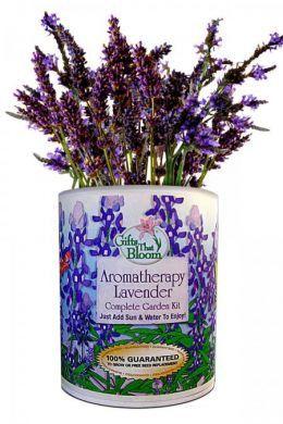 Armatherapy Lavender Grocan Kit Lavender Aromatherapy Garden Kits Lavender Garden
