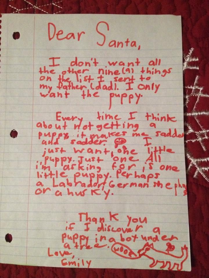 dear santa i dont want all the other nine things on the list i sent to my father i only want the puppy is the best opening to a letter ever - Father Christmas Letters