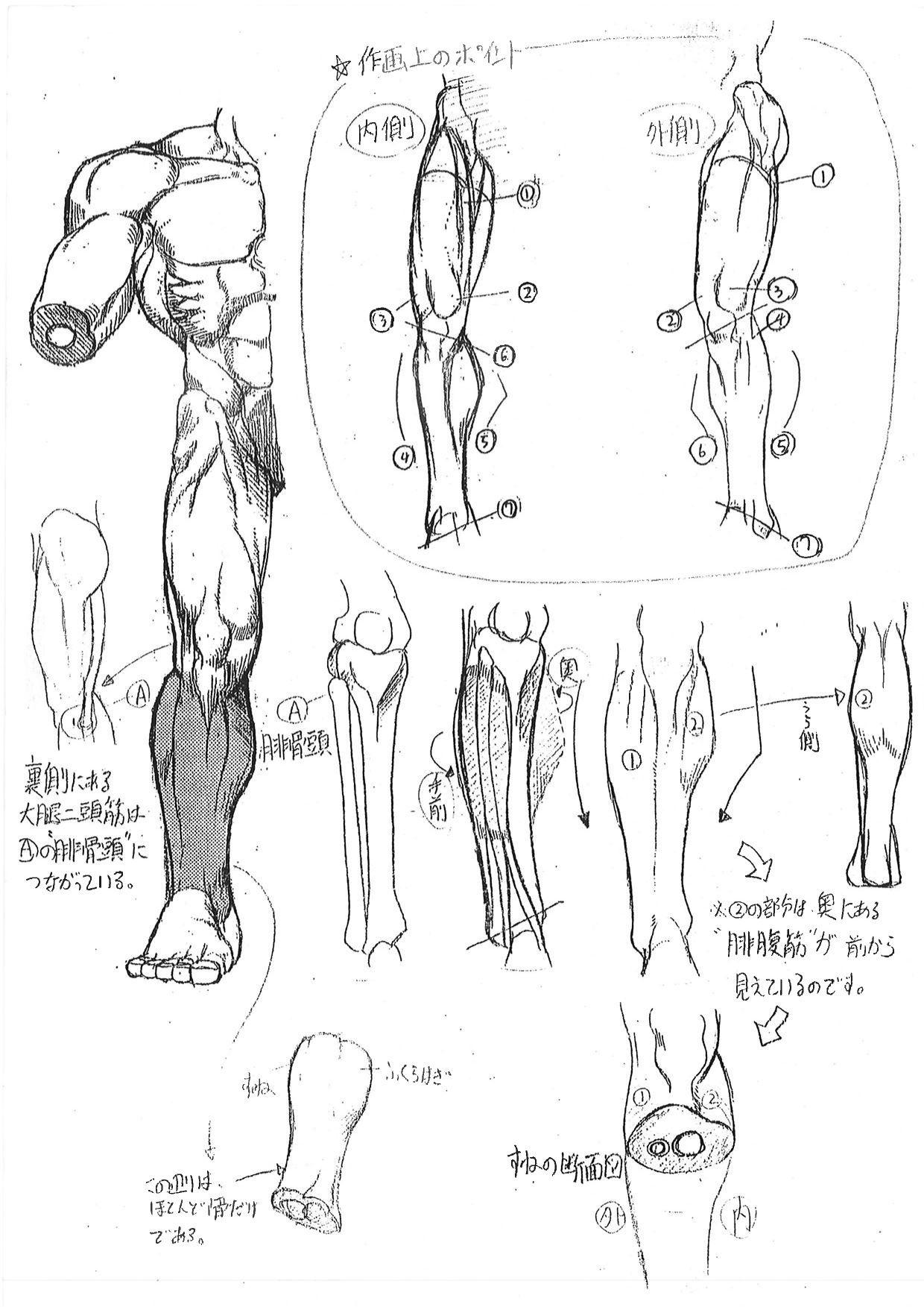 アートの話 No.001「あやしい美術解剖図」 | 美術裏話 | 活動報告書 ...