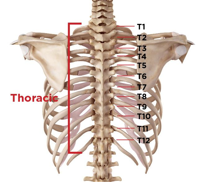 Do I Have Spinal Stenosis in My Lumbar, Cervical, or Thoracic Back ...