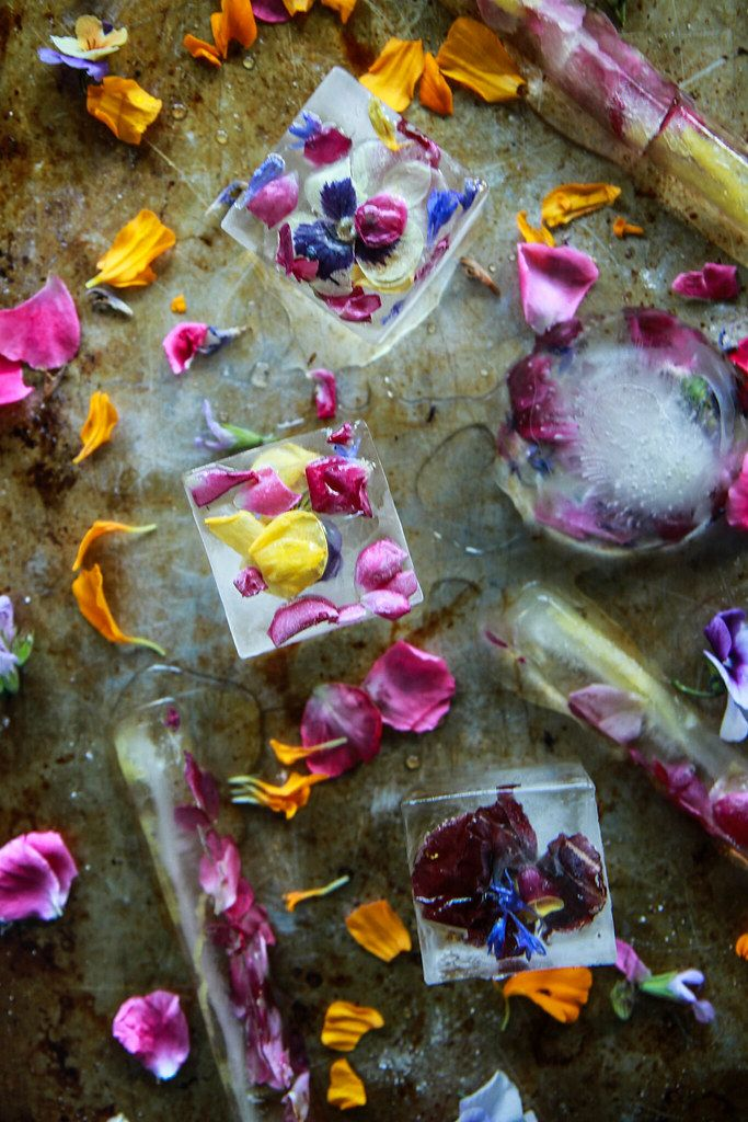 How To Make Edible Flower Ice Cubes Heather Christo In 2020 Flower Ice Flower Ice Cubes Flower Ice Cubes Diy