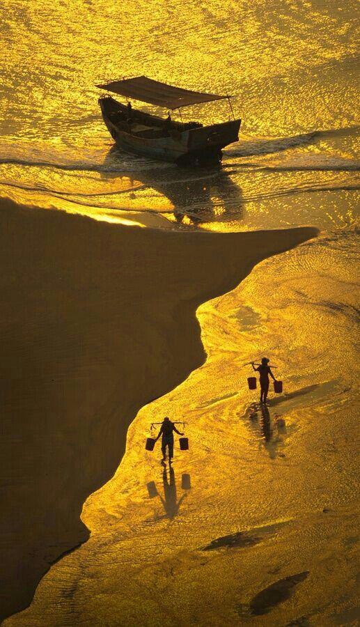 Gold sea// Magnificent